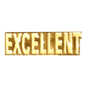 Excellent (Text) Pin