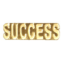 Success - Text Pin