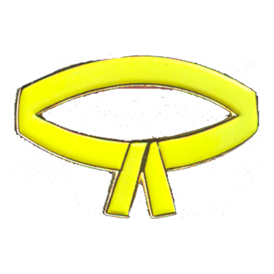 Yellow Belt Pin