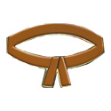 Brown Belt Pin
