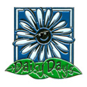 Daisy Days Pin