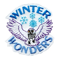 Winter Wonders (Owl)