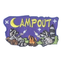 Camp Out (Two Raccoons)