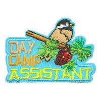 Day Camp Assistant